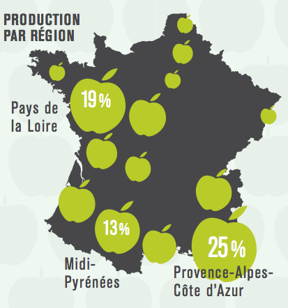 production-pommes-france-région