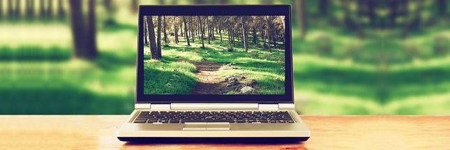 E-commerce: quand économie rime avec écologie