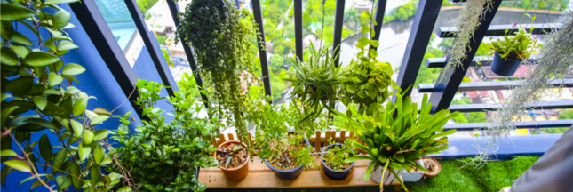 Nos conseils pour aménager son balcon en un petit coin de paradis