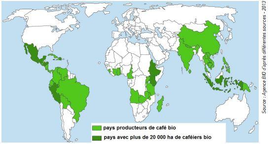 cafe-bio-carte-producteurs