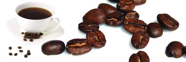 Le café bio la saveur naturelle et corsée