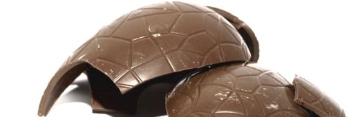 Le chocolat bio, gourmandise sans pesticides