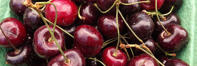 Fruit de saison : je mangerai encore des cerises en été