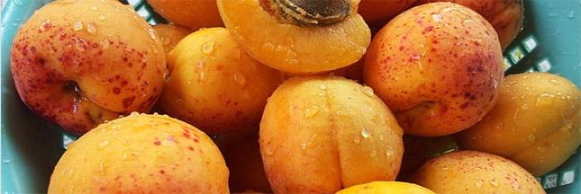 Légumes et fruits d'été : l'abricot
