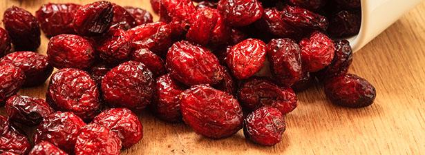 Populaire La cranberry,c'est quoi? - Blog-trotteur - Le blog de toutes vos  VO16