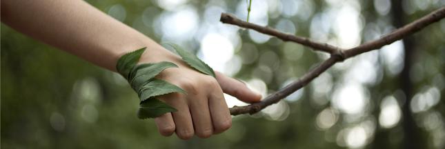 soin nature, phytothérapie