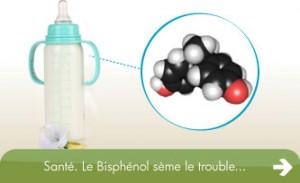 bisphenol A BPA