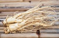 renforcer système immunitaire plantes, Le Ginseng