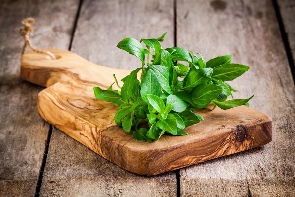 basilic-aromat-santé_shutterstock_257171830