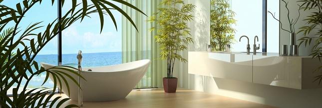 9 conseils pour une salle de bain cologique for Salle de bain economique