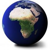 Developpement durable article