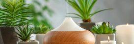 Aromathérapie – Les meilleures huiles essentielles à respirer