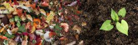 Pourquoi et comment recycler les déchets organiques?
