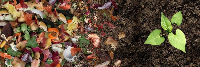 Pourquoi et comment recycler les déchets organiques ?