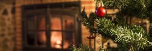 Menu : un repas de Noël classique et 100% bio
