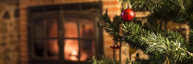 Quel sapin choisir pour un Noël plus vert ?