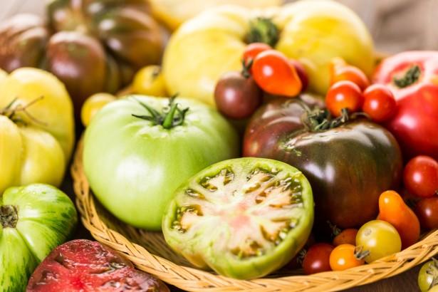 variétés anciennes, tomates