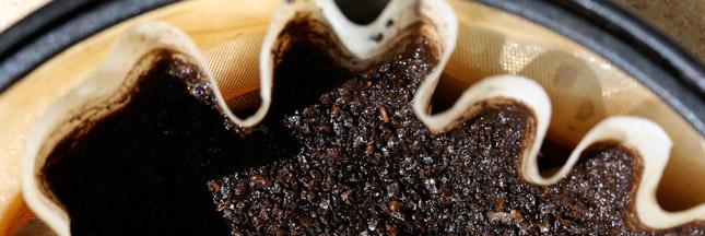 7 astuces pour réutiliser le marc de café !