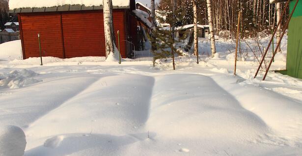 protéger son jardin de la neige