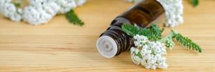 La phytothérapie pour soigner la déprime hivernale