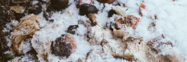 compost hiver, humus, neige, jardin écolo