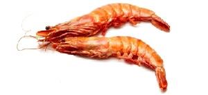 guide-d-achat-poisson-crevettes