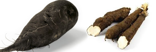 Légumes oubliés : le salsifis noir, ça me suffit