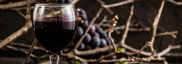 Les vins biodynamiques, l'occultisme au service de Bacchus