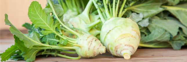 Les légumes oubliés : le chou-rave, pour ne pas se faire voler