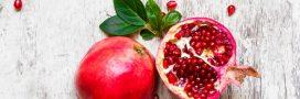 La grenade, un fruit super ou un superfruit?
