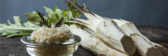 Les légumes oubliés : le raifort revient fort