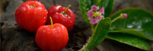 L'acérola: vitamine C et vitalité au naturel
