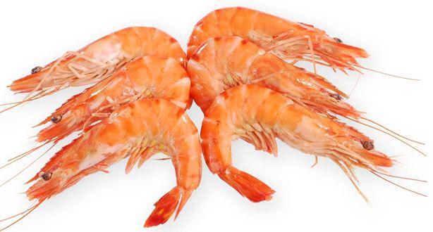 Crevette de madagascar poisson qu 39 on peut acheter page 2 for Acheter des poissons