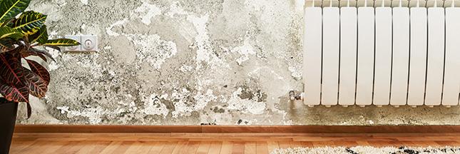 comment enlever l odeur d humidit dans une maison youtube. Black Bedroom Furniture Sets. Home Design Ideas