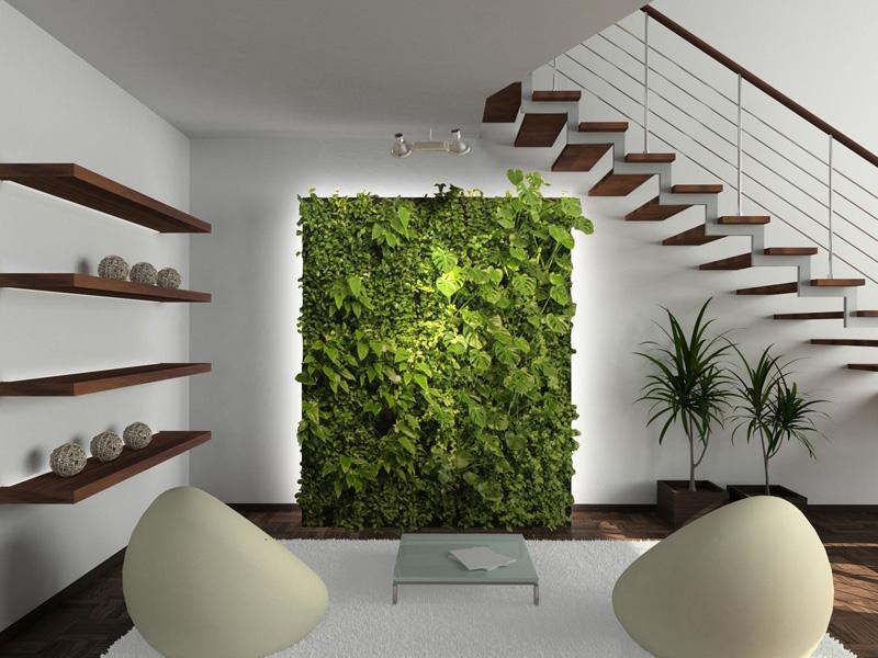 Les murs végétaux à faire soi-même