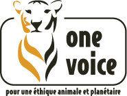 Logo_One_voice1.png