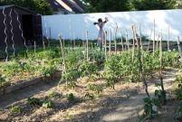 jardin-partage-troyes