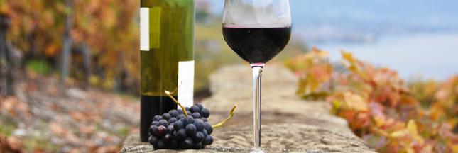 Le vin naturel : une étiquette difficile à déchiffrer