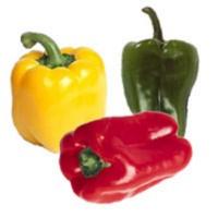 fruits et légumes de saison: le poivron