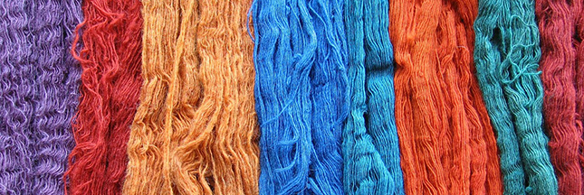 La fibre écolo change la mode