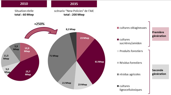 production-agrocarburants-2eme-generation-2035