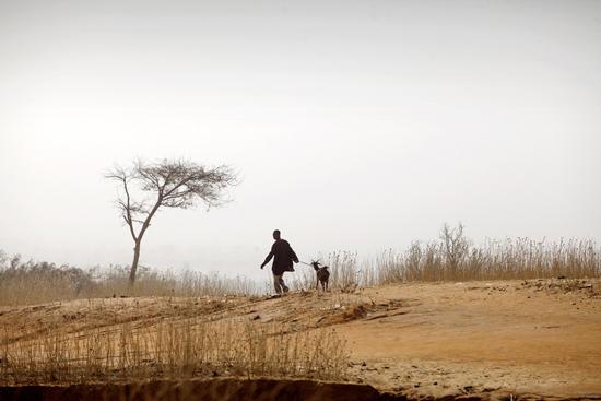 Les arbres autour de Kouloumboutey ont disparu suite à la grande famine de 1984-1985 due à la sécheresse. Crédit Photo: FAO