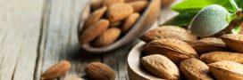 Les fruits à coque: les secrets de l'amande