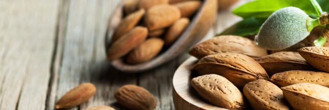 Les fruits à coque : les secrets de l'amande