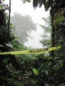 CO2 amazonie
