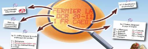Carrefour a trouvé la poule aux oeufs d'or