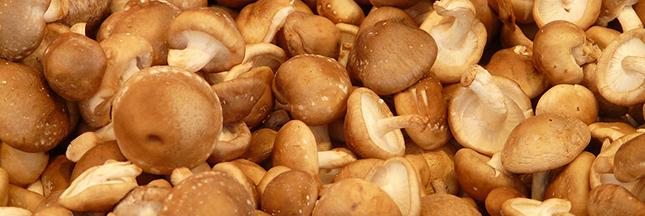 Hiver : les aliments qui boostent votre système immunitaire