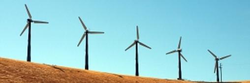 Environnement. Doit-on peindre les éoliennes ?