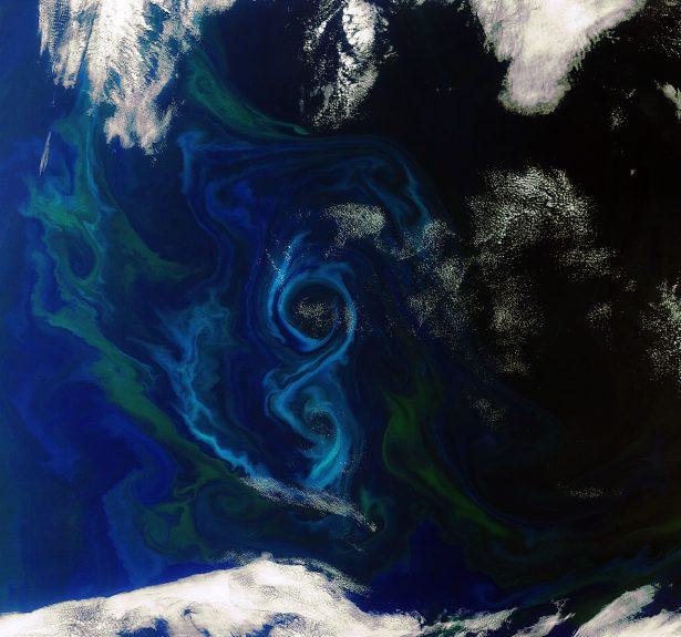 satellites, phytoplancton