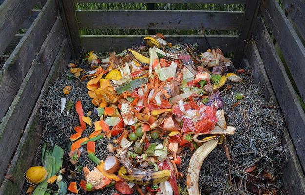 compost-jardin-écolo
